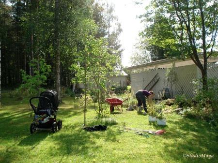 090824-Plantering-4454