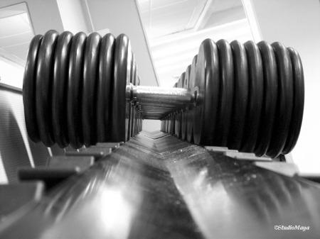 Gym1-CopyrightStudioMaya-Z0257BW
