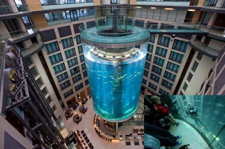 AquaDom i Berlin är ett 25 m högt cylindriskt akvarium med en hiss inuti.