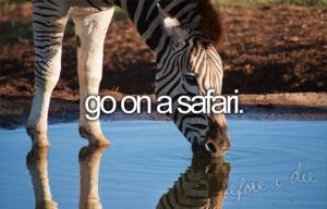 gosafari