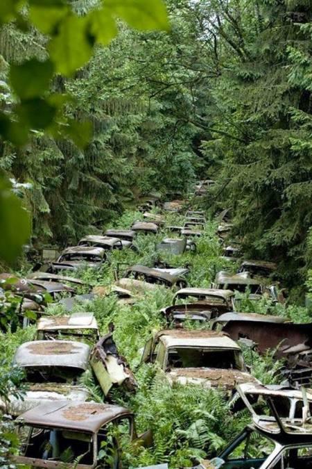 I skogen nära byn Chatillon i Belgien fanns tidigare denna bilkyrkogård