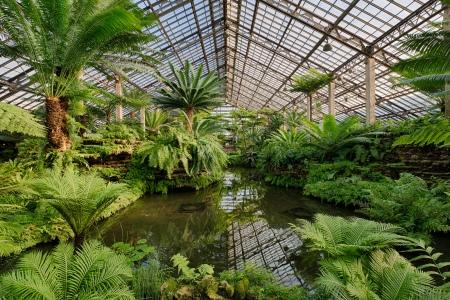 garden show indoor