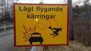 lågtflygande