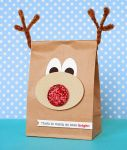 packaging-christmas-gift-10