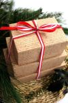 packaging-christmas-gift-11